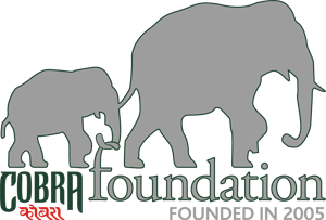 Cobra Foundation Retina Logo