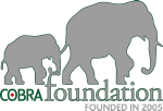 Cobra Foundation Logo